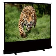 """Напольный перносной экран Cinema S'OK Standscreen SCPSF-122x163, 3:4, 80"""""""